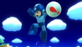 WiiU SuperSmashBros Items Screen 55.jpg